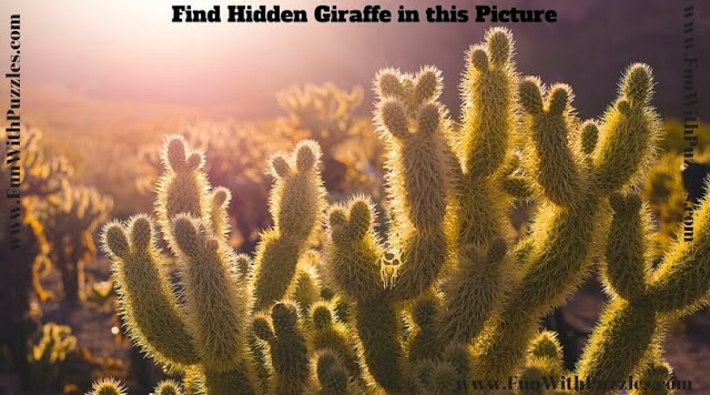 Hidden Animal Picture Puzzle