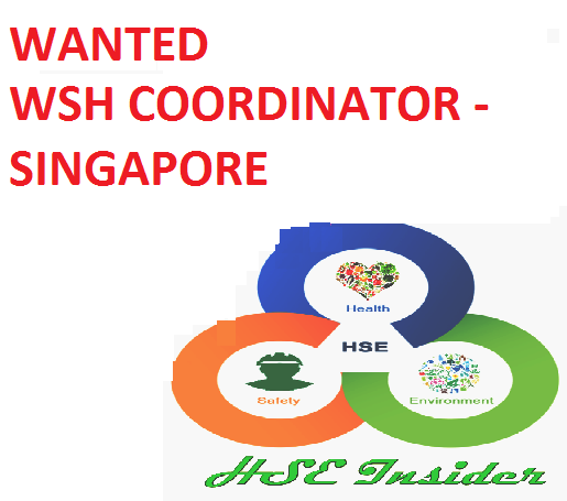 hse insider   wanted wsh coordinator