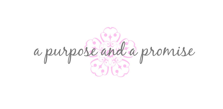 A Purpose and A Promise