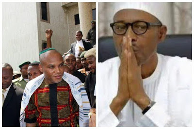 buhari and nnmadi kanu