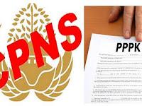 Penting!! Survey HK2 ingin PNS atau P3K Dengan Ketentuan....