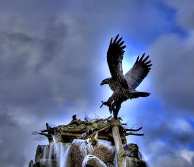 Increíble fotografía HRD águila