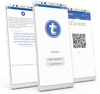 TOKENPAY ICO FULL REVIEW