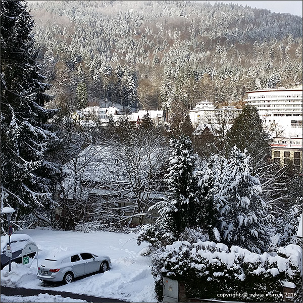 winter © sylvia • sro • 2016