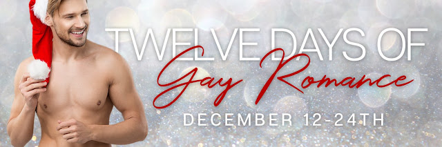 Twelve Days of Gay Romance