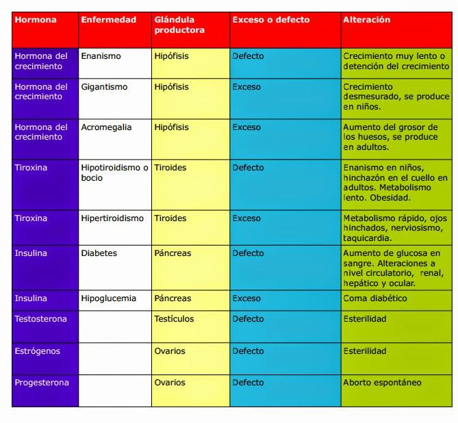 Hormonas : EL CALCIO Y NUESTROS HUESOS