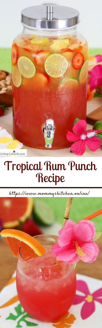 Tropical Rum Punch Recipe #cocktailrecipe #drinks