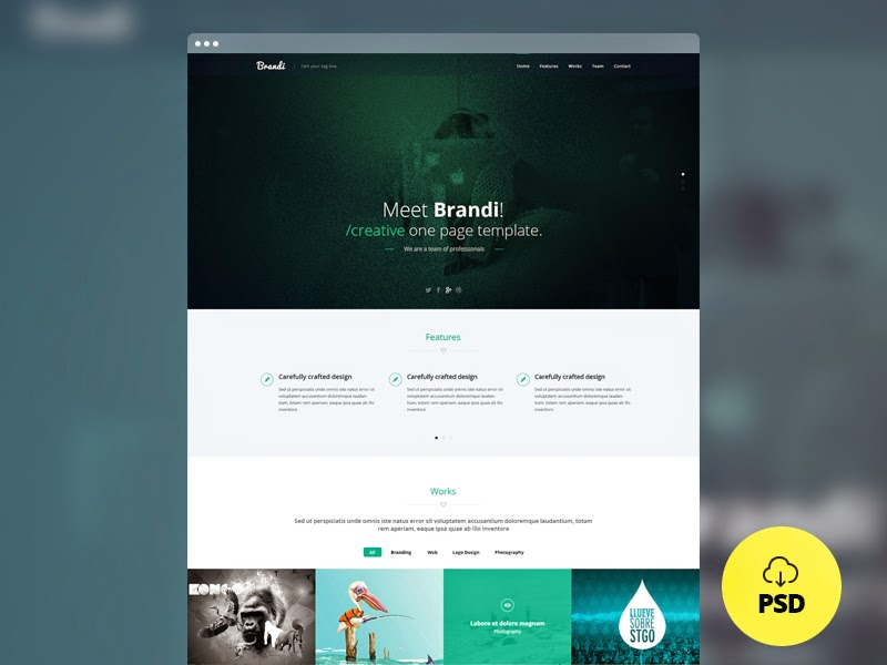 Freebie – Brandi – Creative One Page Multi-Purpose PSD Template