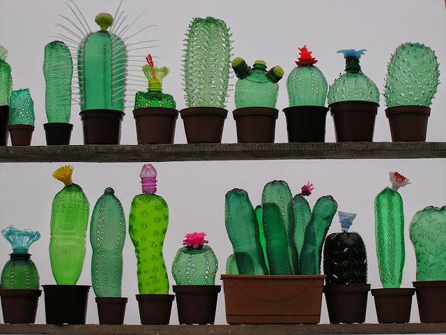 Cactos feitos com garrafas plásticas PET