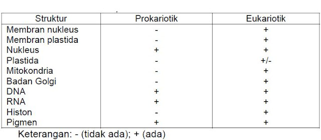 Perbedaan sel prokariotik dan sel eukariotik
