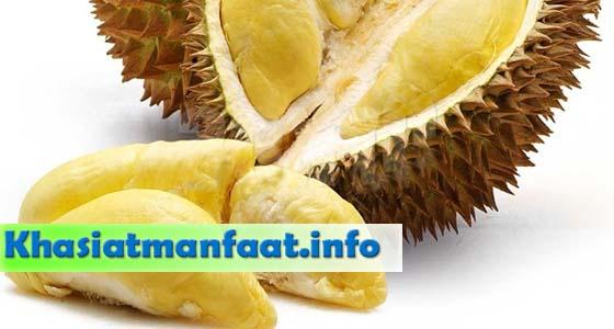 Khasiat dan Manfaat Buah Durian