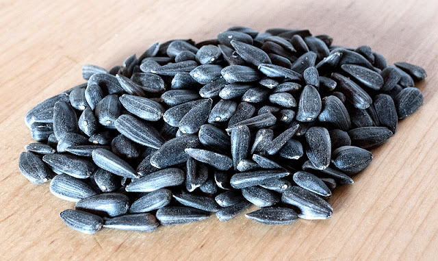 Sunflower seeds close up