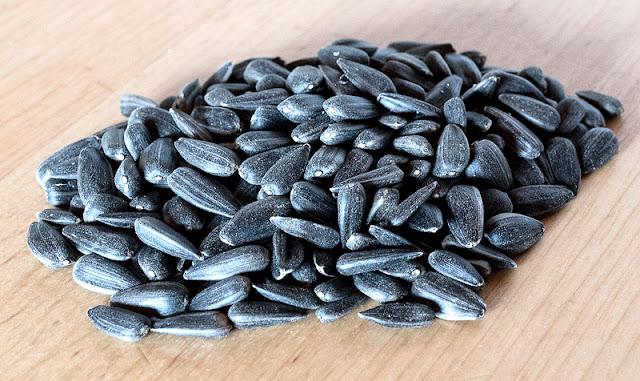 Sunflower seeds close up
