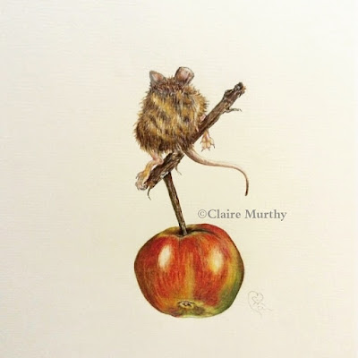 colour pencil drawing of a mouse and apple