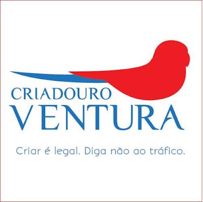 Jornal On-line Aves e Companhia