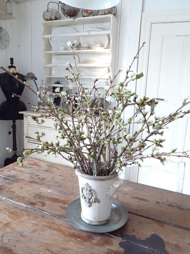 princessgreeneye: Blütenweiss........