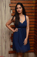 Radhika Mehrotra in a Deep neck Sleeveless Blue Dress at Mirchi Music Awards South 2017 ~  Exclusive Celebrities Galleries 074.jpg