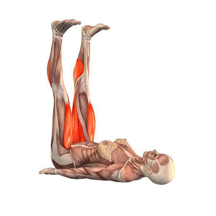 йога с картинками какие мышцы дробны тянуть считалась признаком зажиточности