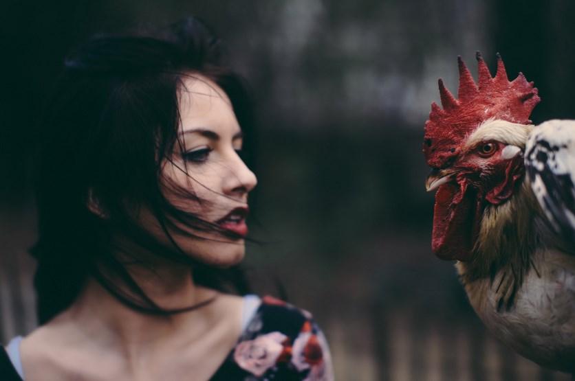 Cewek cantik suka main ayam dan burung