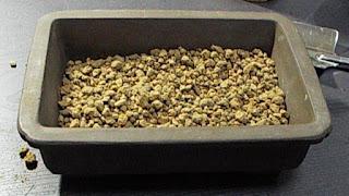 鉢の中の赤玉土のゴロ土