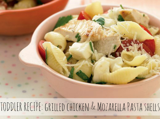 Toddler Recipe: Grilled Chicken & Mozarella Pasta Shells