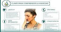 https://steviaven.blogspot.com/2017/10/batidos-e-infusiones-recomendables-salud-sistema-nervioso.html