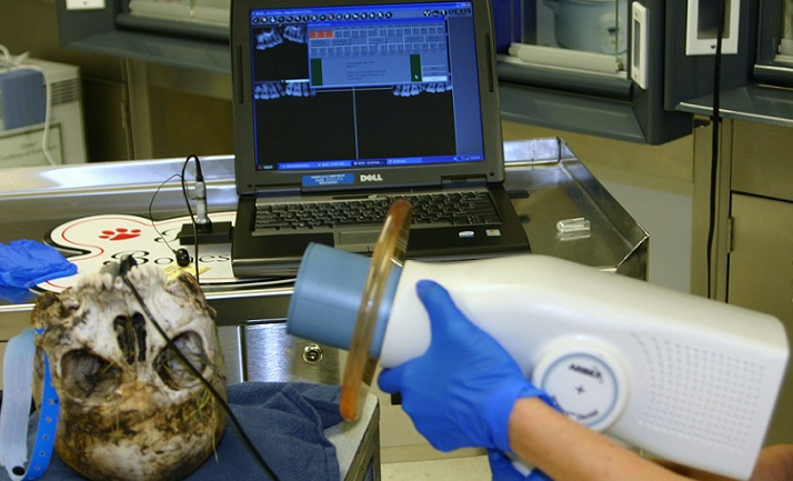 Forensic Dentistry Forensic Odontologists