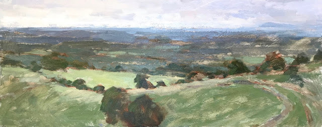 #331 'Early Summer, The South Downs' 9×19″