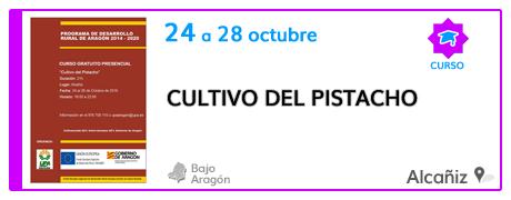 Curso sobre el cultivo del pistacho en Alcañiz