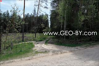 Лесной перекресток около вырубки. Дорога Н9780