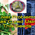 Man With Liver Problems Was Cured Using The Seeds Of This Popular Leafy Vegetable.