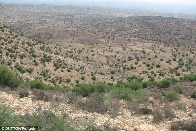 El sitio señalado por Hübner coincidía con muchas de las 51 'pistas' encontradas. Inclusive se descubrió que el lugar estaba rodeado por círculos, tal como muestra la imagen.