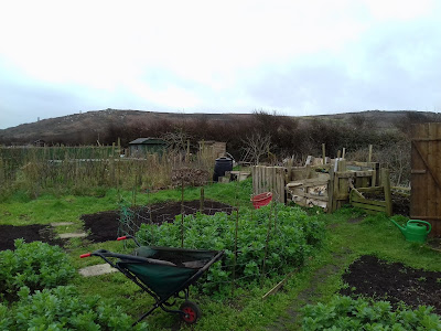 Allotment Growing - Spring  Preparations