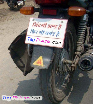 Funny Bike Quotes Full Funny Blog