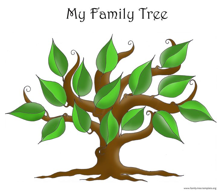 What in the World? My Family Tree