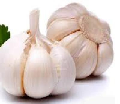 Bawang putih yaitu jenis bumbu dapur yang mempunyai segudang manfaat Manfaat Bawang Putih Untuk Burung Berkicau