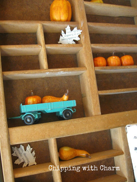 Chipping with Charm: Mini Pumpkins in a Printers Tray...www.chippingwithcharm.blogspot.com