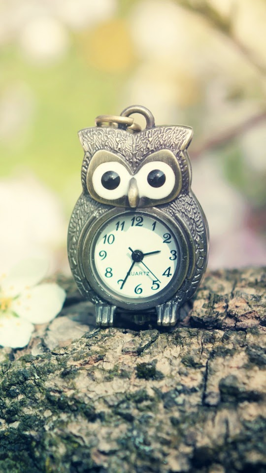 Owl Clock   Galaxy Note HD Wallpaper