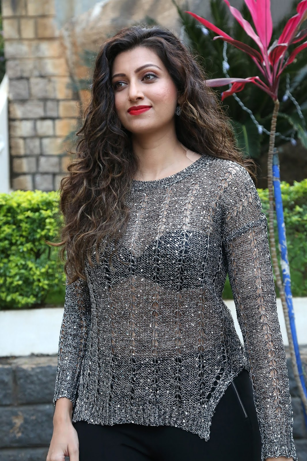 Beauty Galore Hd Hamsa Nandini New Photos In See Through