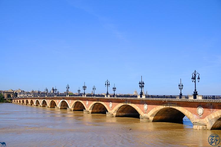 Le Chameau Bleu - Blog Voyage Canal des deux mers à Velo - Arrivée au centre ville de Bordeaux