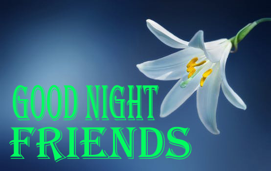 Good Night Flowers Images for Friends