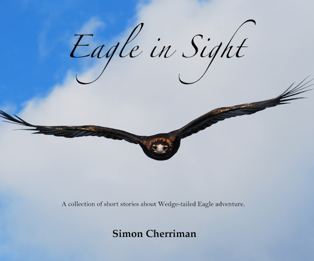 http://au.blurb.com/b/7238266-eagle-in-sight#