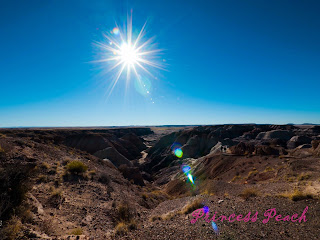 Petrified-Forest-National-Park-石化森林國家公園-blue-mesa