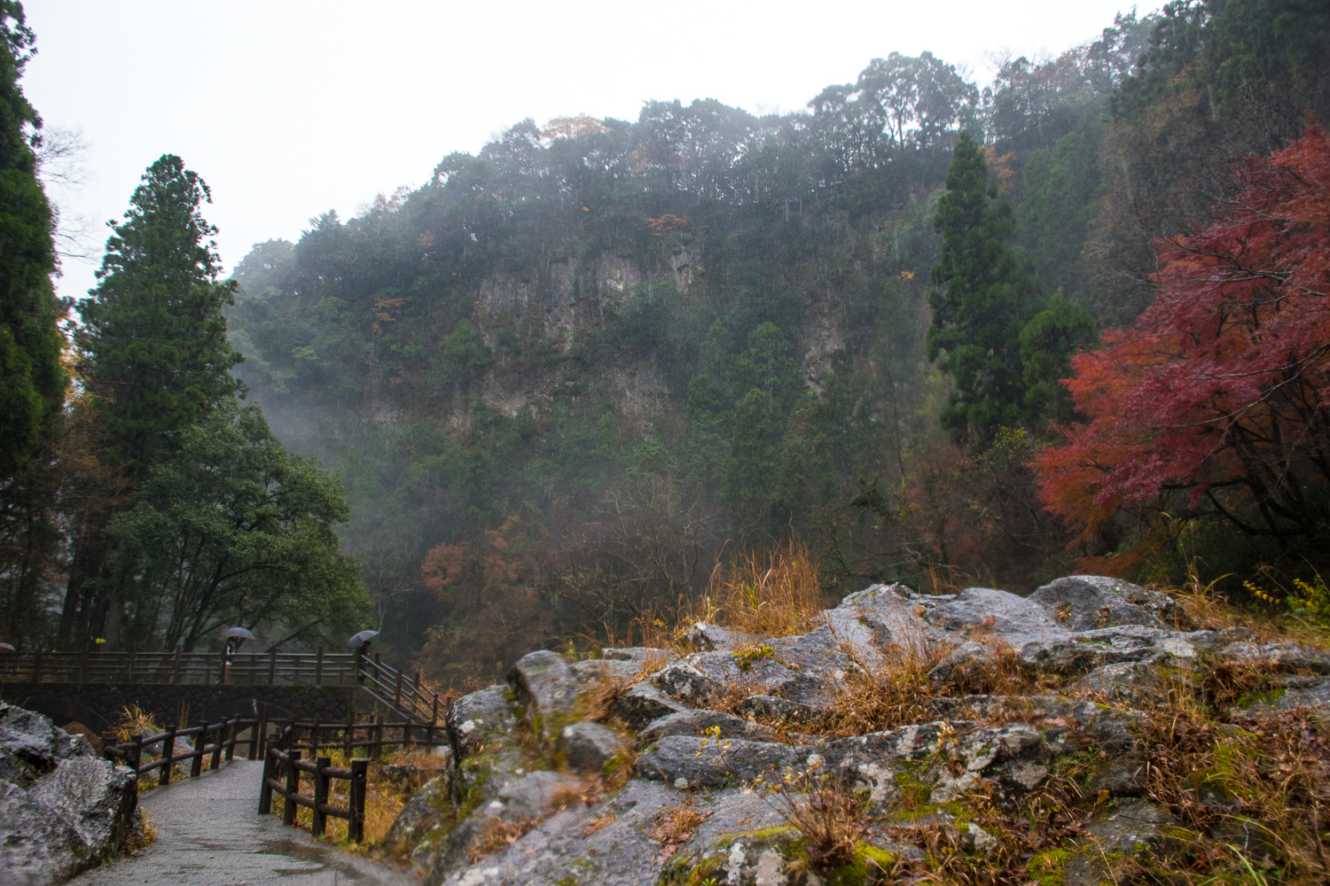takachiho gorge japan in the autumn