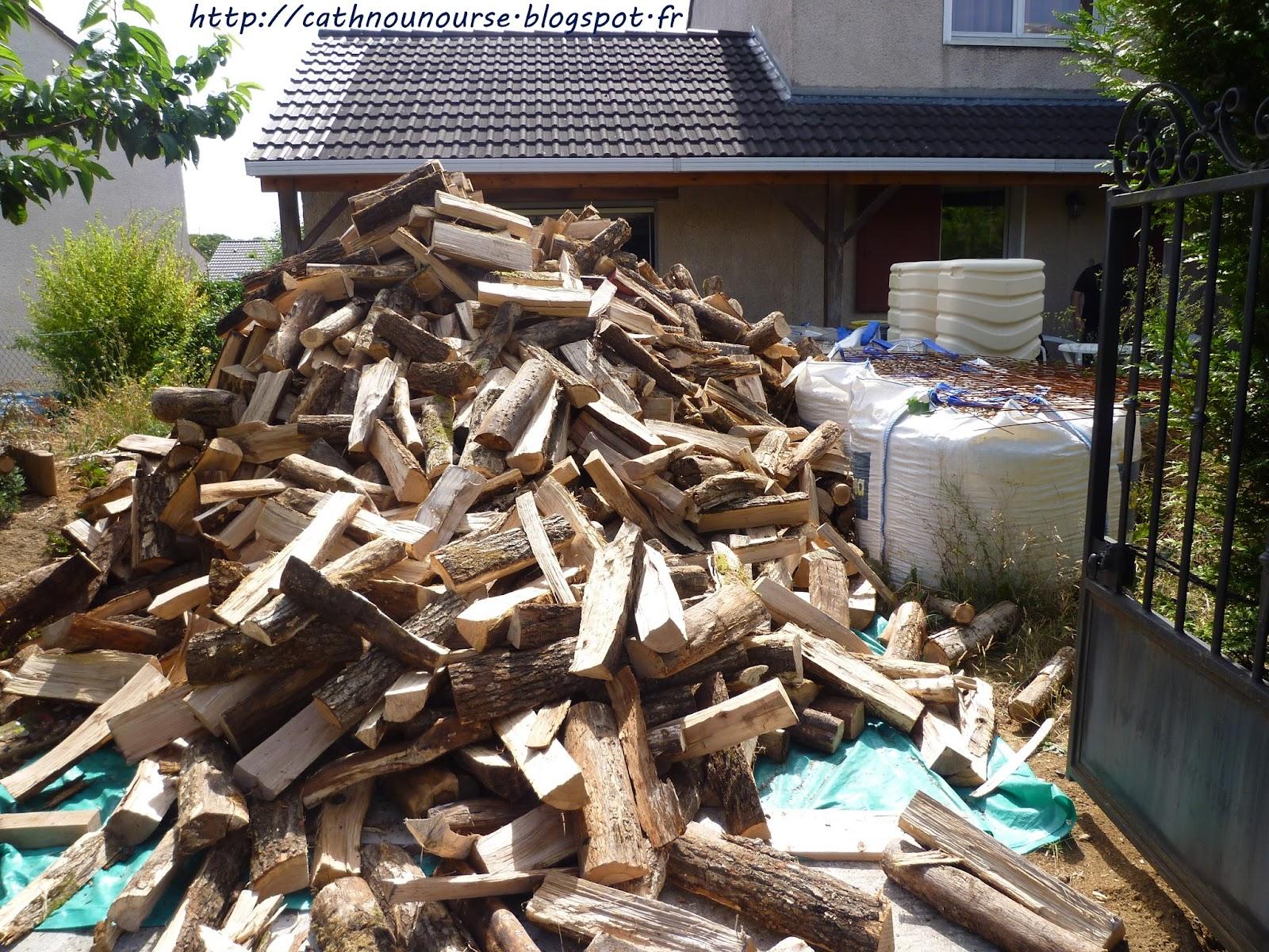 le blog de cathnounourse livraison du bois de chauffage. Black Bedroom Furniture Sets. Home Design Ideas