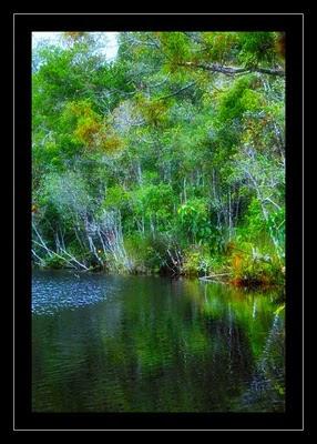 Taman Wisata Alam Sicike-Cike