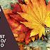 Zaful Wishlist | Outono & Inverno