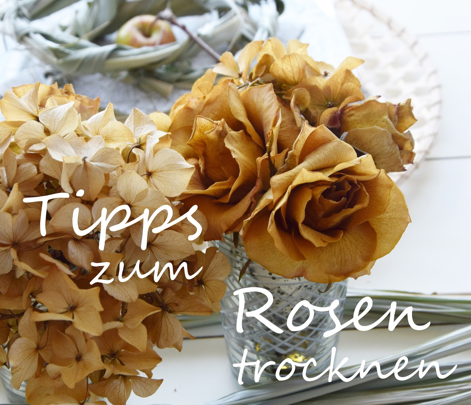 rosen seidig weich trocknen konservieren tipps tricks rose trocknung