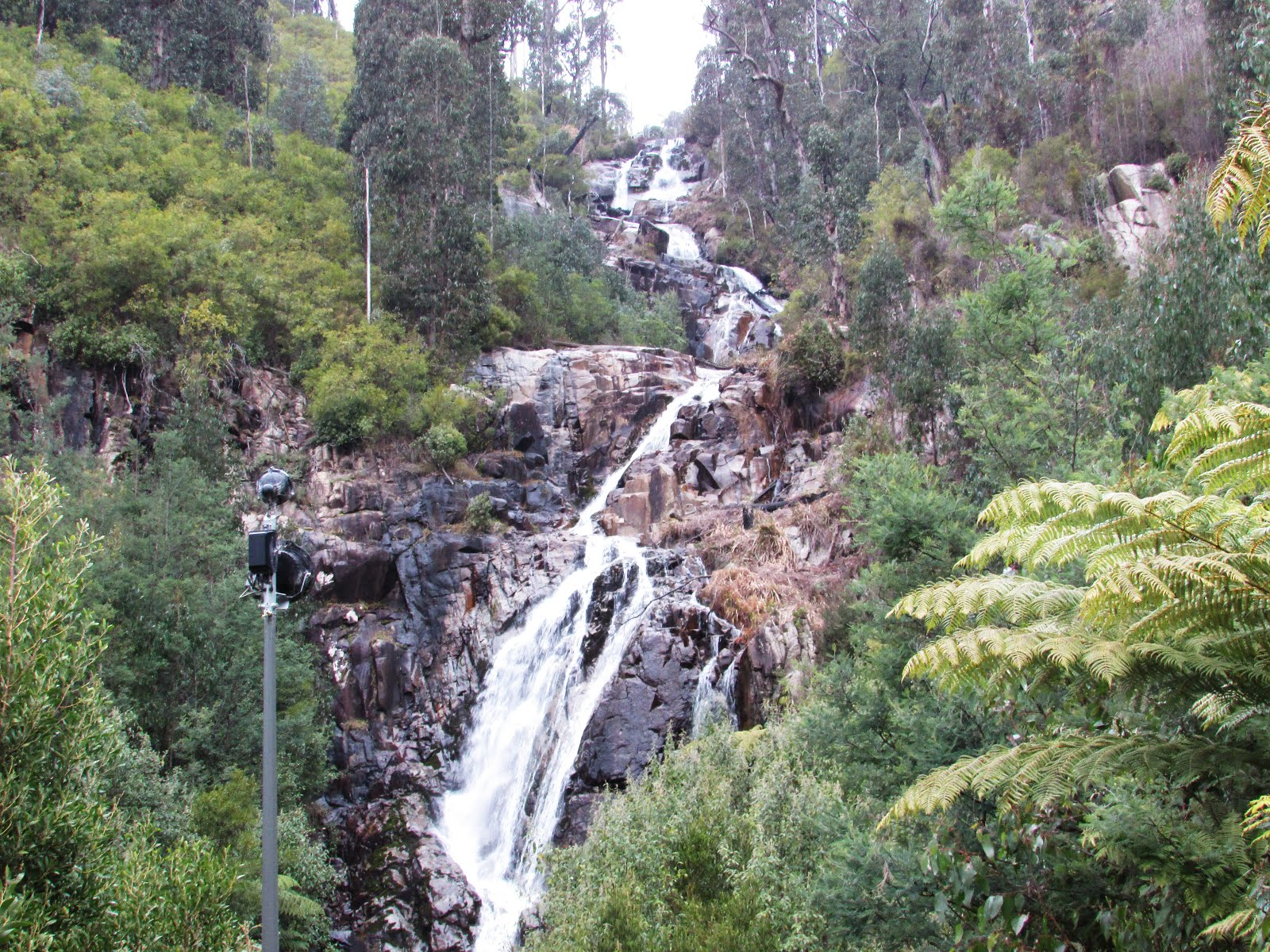 Adventure #20: Steavenson Falls
