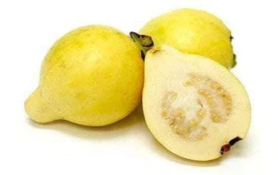 Benefits of guava and its leaves for health